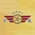 Giant Automobile Pte Ltd